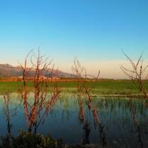 Ultimo tappa, sorge il sole sui campi dopo Cullera (Spagna)