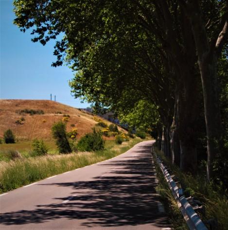 Sulla strada per Aix-en Provence (Francia)